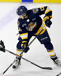 Elias Cohen of the Erie Otters. Photo by Luke Durda/OHL Images
