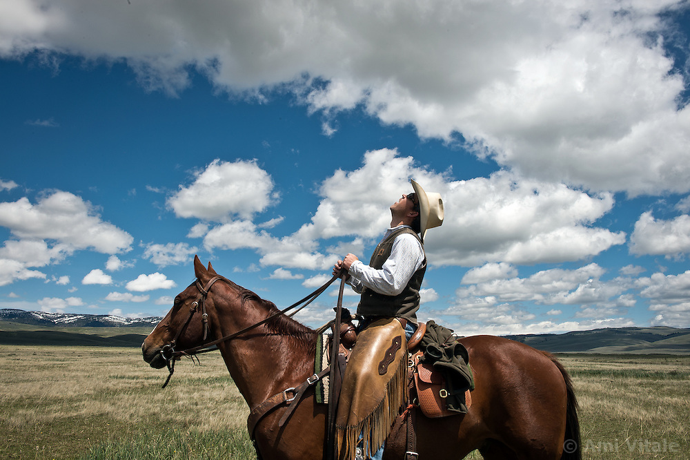Bryan Ulring watches the clouds in Montana's Big Sky country as he herds cows. Spurred by growing concern over beef's environmental impact and the long-term viability of their livelihood, a cohort of Montana ranchers is working to integrate ecological practices into livestock management.  The idea is that cows could be good for the landscape, particularly if they mimic the grazing behavior of wild herbivores. By bunching together for safety and intensely grazing an area for a brief period, before moving on, rangeland health will improve.