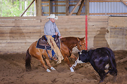 May 20, 2017 - Minshall Farm Cutting 3, held at Minshall Farms, Hillsburgh Ontario. The event was put on by the Ontario Cutting Horse Association. Riding in the 2,000 Limited Rider Class is Rheal Bourgeois on Smart N Prime owned by Lisa Minshall.