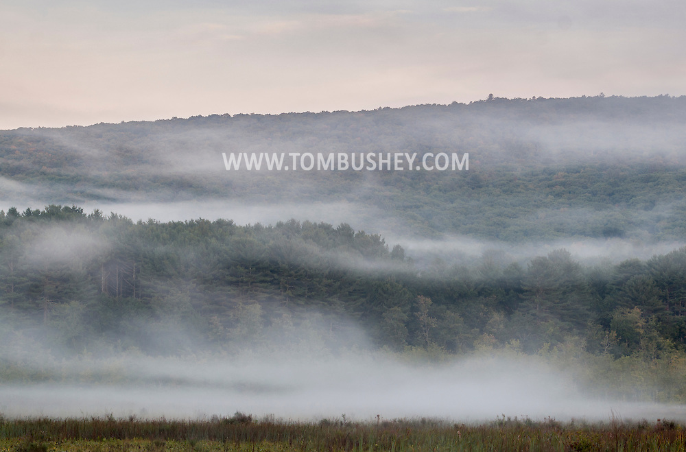 Mamakating, New York - Scenes from the Bashakill Wildlife Management Area on Sept. 17, 2016.