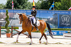 Klossinger Lisa-Maria (GER) - FBW Daktari<br /> European Championships Dressage Junior and Young Riders 2014<br /> © Hippo Foto - Leanjo de Koster
