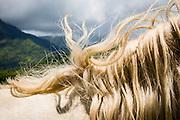 malie kauai lifestyle shoot 6/30-7/5/05