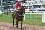 Numbercruncher and jockey Theo Gillard head to the start for the 4.05PM The Randox Health Foxhunters' Steeple Chase (Class 2) 2m 5f during the Grand National Festival Week at Aintree, Liverpool, United Kingdom on 4 April 2019.
