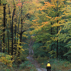 Fall in Vermont's Green Mountains.  Mountain biking on an old logging road on the northern slopes of Rice Hill.  Wardsboro, VT