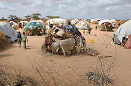 Homes in the Dagahaley refugee camp in Dadaab, Kenya, August 27, 2011.