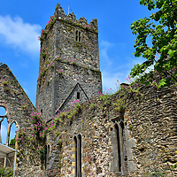 Greyfriars Abbey&rsquo;s History in Waterford, Ireland <br />