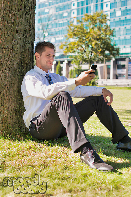 Portrait of mature businessman using smartphone while sitting under the tree during break