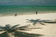 Africa. Tanzania. Zanzibar. Jambiani..Palm trees shadows and local people..CD0010