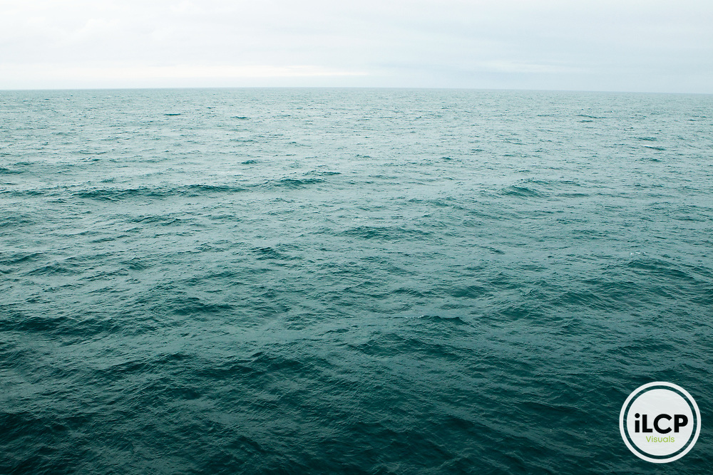 Southern Pacific Ocean, Cook Strait, New Zealand