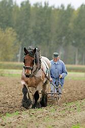 EHBO <br /> Dierenkliniek De Bosdreef - Moerbeke 2004<br /> Photo © Hippo Foto