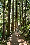 Hike under the shadows of old growth trees along beautiful Thunder Creek to Fourth of July Pass from Colonial Creek Campground, in Ross Lake National Recreation Area, in the North Cascades mountain range, Washington, USA. The best view is a mile short of the Pass, at Fourth of July Camp, 9 miles round trip with 2000 feet gain.