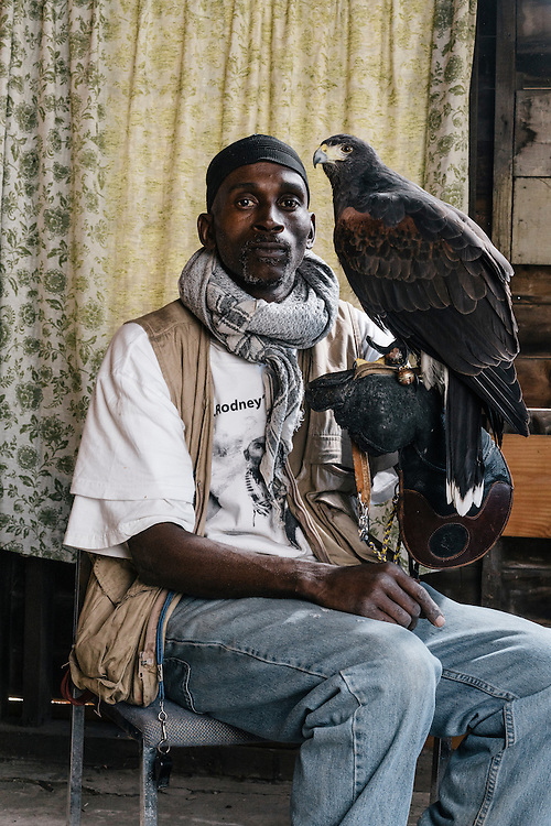 Rodney Stotts sits with his Harris Hawk, Agnes, at the Wings Over America raptor sanctuary in Maryland on March 17, 2016. Agnes is Stotts' personal bird. At the sanctuary he has four Harris hawks, one red tail hawk and a Eurasian eagle owl.