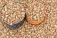 Beans at the market in Rissani, Morocco.