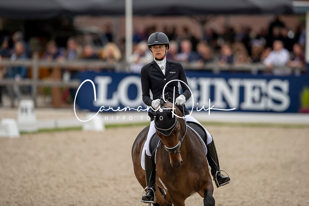 Michel Botton Jessica, FRA, Don Vito de Hus<br /> World Championship Young Dressage Horses - Ermelo 2019<br /> © Hippo Foto - Dirk Caremans<br /> Michel Botton Jessica, FRA, Don Vito de Hus