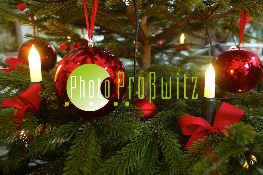 Mannheim.  Cafe Wissenbach. Weihnachtsbazar. Socken und Gestecke<br /> <br /> Bild: Pro&szlig;witz