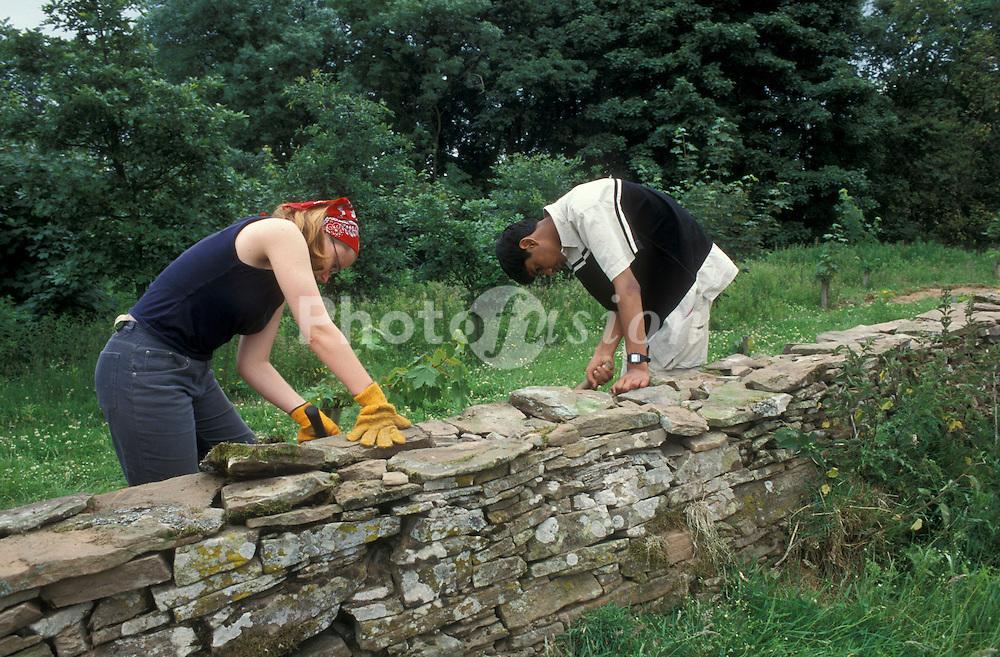Volunteers dry stone walling; UK