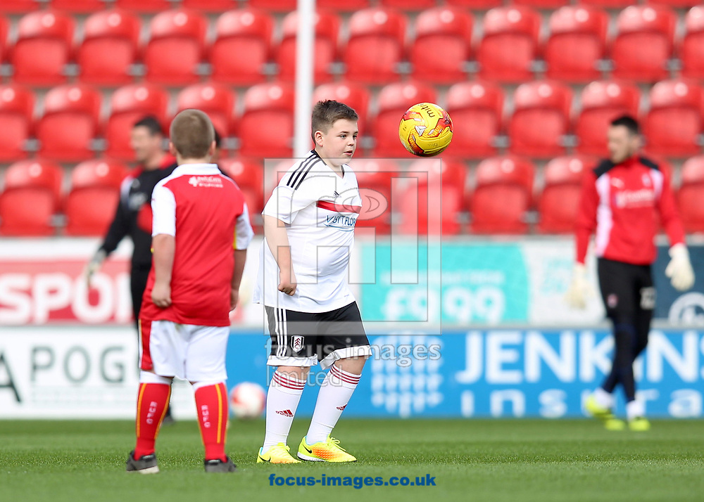 The mascots of both Rotherham United and Fulham enjoy a game of football prior the Sky Bet Championship match at the New York Stadium, Rotherham<br /> Picture by James Wilson/Focus Images Ltd 07709 548263<br /> 01/04/2017