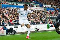 Football - 2016 / 2017 Premier League - Swansea City vs. Everton<br /> <br /> Jordan Ayew of Swansea crosses the ball despite the challenge of Idrissa Gueye of Everton, at Liberty Stadium.<br /> <br /> COLORSPORT/WINSTON BYNORTH