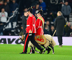 DERBY COUNTY RAM MASCOT, Derby County v Leeds United, Championship League Pride Park Tuesday 21st February 2018, Score 2-2, :Photo Mike Capps