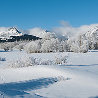 fresh snow and cold wintery day, two medicine valley, blackfeet reservation, montana