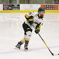 2nd year forward Sam Geekie (15) of the Regina Cougars in action during the Women's Hockey home game on January 27 at Co-operators arena. Credit: Arthur Ward/Arthur Images