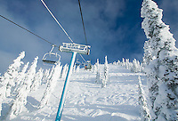"""A winter scenic, riding the """"Eagle"""" chairlift at Mount Washington, shows the large abundance of snow frozen in the trees.  Comox Valley, Vancouver Island, British Columbia, Canada."""