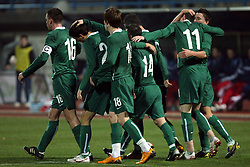 Slovenian national team celebrating the goal of Milivoje Novakovic in the first half at the UEFA Friendly match between national teams of Slovenia and Denmark at the Stadium on February 6, 2008 in Nova Gorica, Slovenia.  Slovenia lost 2:1. (Photo by Vid Ponikvar / Sportal Images).