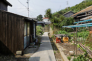 Aoshima, Ehime prefecture, September 4 2015 - In the small village of Aoshima island.<br /> Aoshima (Ao island) is one of the several « cat islands » in Japan. Due to the decreasing of its poluation, the island now host about 6 times more cats than residents.
