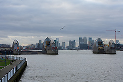 © Licensed to London News Pictures. 13/01/2017. LONDON, UK.  <br /> Alpha (left) and Bravo (right) gates are closed today on the Thames Barrier. Alpha gate has been closed in preparation, to reduce manpower required if a full closure of the Thames Barrier is required tonight to manage high tide and prevent flooding to London.  Note that Bravo gate has been closed this week for maintenance. Photo credit: Vickie Flores/LNP