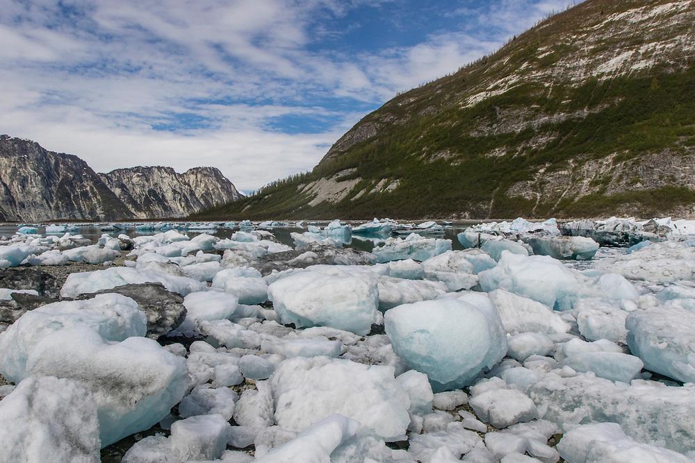 Stranded ice bergs near White Thunder Ridge of Glacier Bay.
