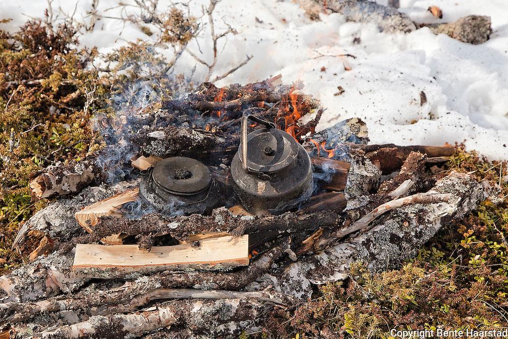 Sámi coffee making. Svartkjeler på bål, vårflytting av rein i Gåebrien sijte, dvs. Riast-Hylling reinbeitedistrikt. Håltålen-Tydal, Sør-Trøndelag.