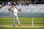 Somerset's Tim Groenewald is bowled by Lancashire's Kyle Jarvis during the Specsavers County Champ Div 1 match between Somerset County Cricket Club and Lancashire County Cricket Club at the County Ground, Taunton, United Kingdom on 4 May 2016. Photo by Graham Hunt.