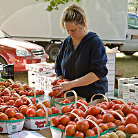 It's heirloom tomato-time at Sosnicki Organics stall at Dufferin Grove Organic farmers' market in Toronto, Canada