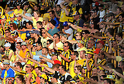 Phoenix fans. A-League football - Wellington Phoenix v North Queensland Fury at Westpac Stadium, Wellington, New Zealand on Sunday, 13 February 2011. Photo: Dave Lintott / photosport.co.nz