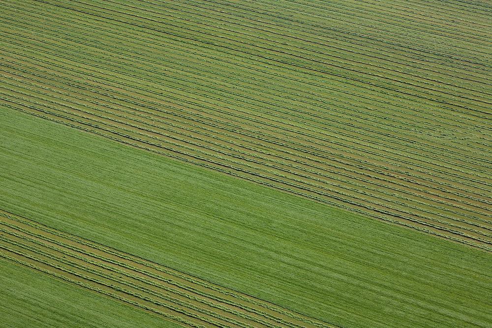 Nederland, Flevoland, Zuidelijk Flevoland,  08-09-2009. Het maaien van gras met heeft geometrische patronen in het grasland doen ontstaan.Cutting grass with a tractor creates geometric patterns in the grassland .luchtfoto (toeslag); aerial photo (additional fee required); .foto Siebe Swart / photo Siebe Swart