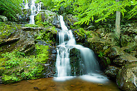 Spring waterfall in Shendoah, Va.
