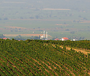 Vineyards & Mosques - worlds apart in Turkey