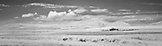 Infrared photograph of Badger Mountain, Richland, WA.  Fine art photography by Michael Kloth. Black and white infrared photographs