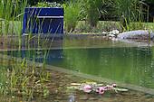 Natural Pool 925