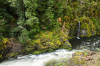 Scenic image of the Smith River in Redwood National Park, CA