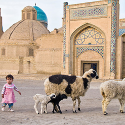 Girl with sheep, Bukhara, Uzbekistan, Asia.