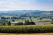 Landschaft mit Obstanbau bei Frickingen, Bodensee, Baden-Württemberg, Deutschland