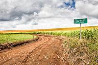Estrada de terra rumo à Prainha. Ouro Verde, Santa Catarina, Brasil. / <br /> Dirt road in a rural landscape. Ouro Verde, Santa Catarina, Brazil.