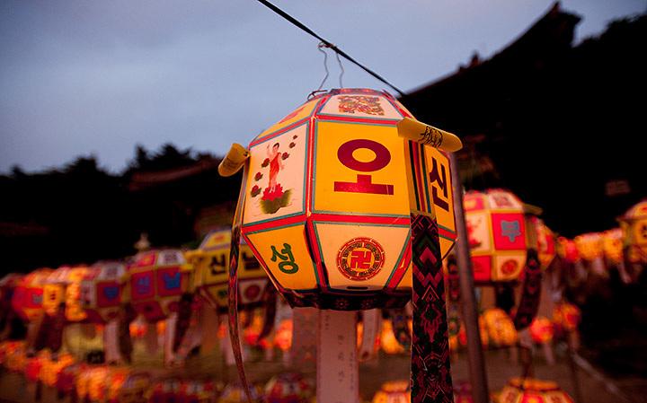 Lanterns glow in front of Yongeun Temple during celebrations in Busan.