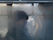 Mann hinter einer gefrorenen Autobus Glasscheibe. Jakutsk hat 236.000 Einwohner (2005) und ist Hauptstadt der Teilrepublik Sacha (auch Jakutien genannt) im Foederationskreis Russisch-Fernost und liegt am Fluss Lena. Jakutsk ist im Winter eine der kaeltesten Grossstaedte weltweit mit durchschnittlichen Winter Temperaturen von -40.9 Grad Celsius. Die Stadt ist nicht weit entfernt von Oimjakon, dem Kaeltepol der bewohnten Gebiete der Erde.<br /> <br /> Men sitting behind a frozen window of a Yakutsk bus. Yakutsk is a city in the Russian Far East, located about 4 degrees (450 km) below the Arctic Circle. It is the capital of the Sakha (Yakutia) Republic (formerly the Yakut Autonomous Soviet Socialist Republic), Russia and a major port on the Lena River. Yakutsk is one of the coldest cities on earth, with winter temperatures averaging -40.9 degrees Celsius.