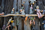 The Island of the Dolls (Isla de las Muñecas). Dead dolls of all kinds hang from the trees and vines and rafters, their eyes bewitching and disturbing the visitors who have come to gawk and photograph in this surreal sanctuary in Xochimilco, Mexico. Feb. 24, 2008. (ivan gonzalez).