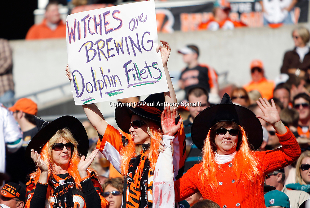 Fans dressed in Halloween costumes cheer for the Bengals during the Cincinnati Bengals NFL week 8 football game against the Miami Dolphins on Sunday, October 31, 2010 in Cincinnati, Ohio. The Dolphins won the game 22-14. (©Paul Anthony Spinelli)