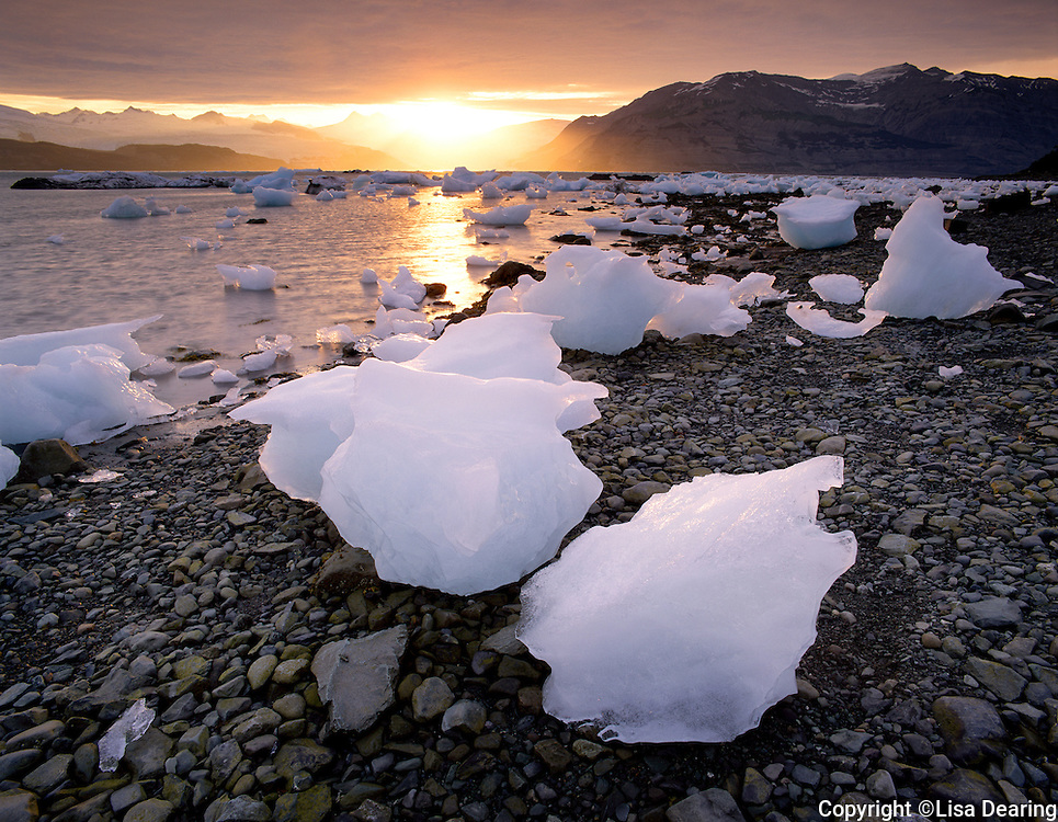 Stock photo of glacial icebergs on beach in Wrangel St. Elias Wilderness in Icy Bay Alaska