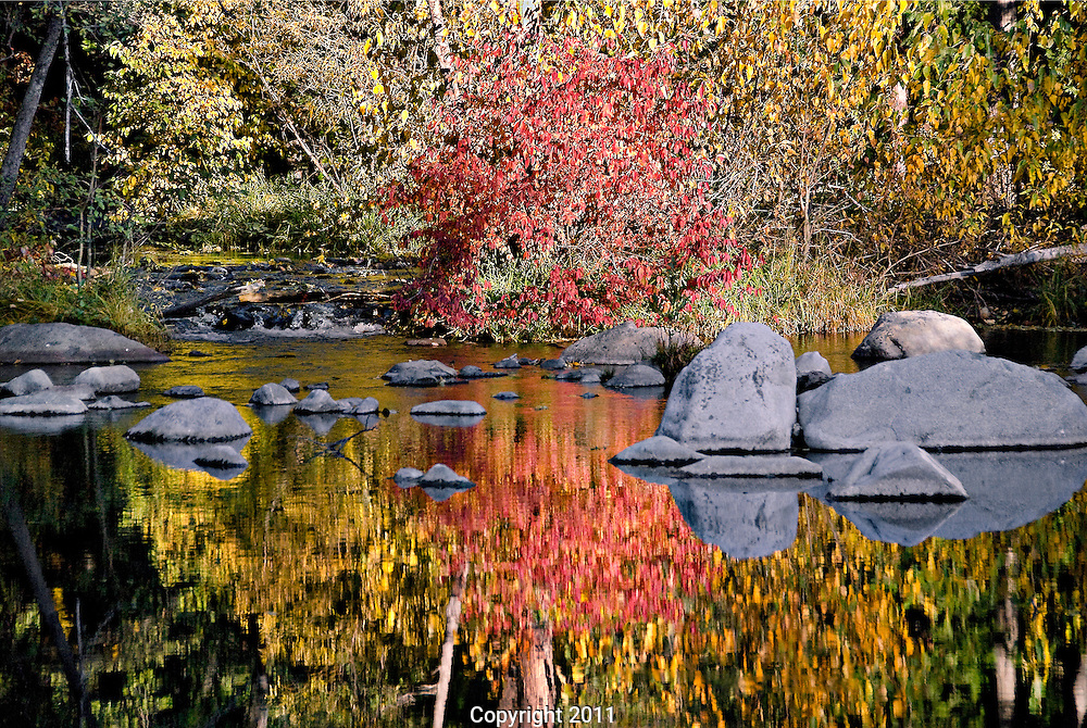 Reflections of fall colors in the river