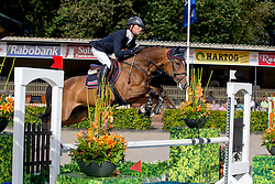 Van Bussel Rob (NED) - Contino<br /> KWPN Paardendagen - Ermelo 2012<br /> © Dirk Caremans